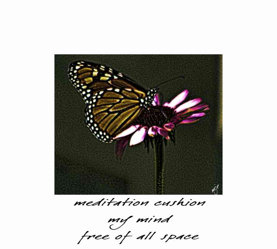 meditationcushionhaiga