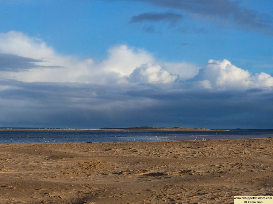 clouds and blue sky in winter by the Old Bar at low tide