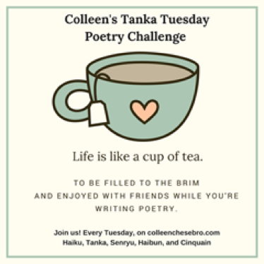 Tanka tuesday