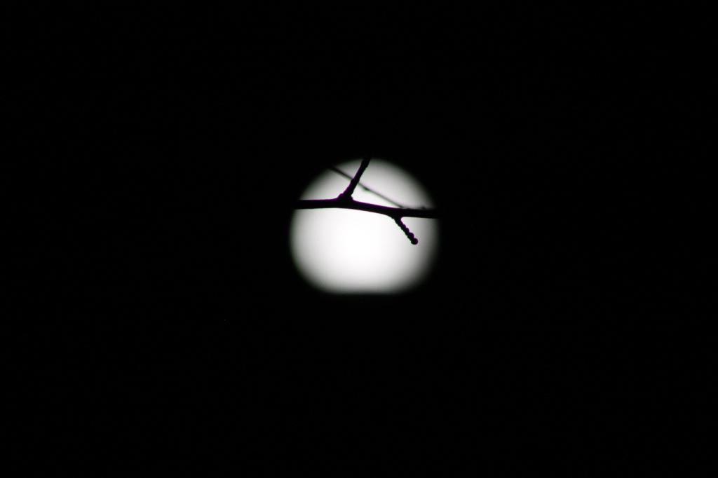 full-moon-3
