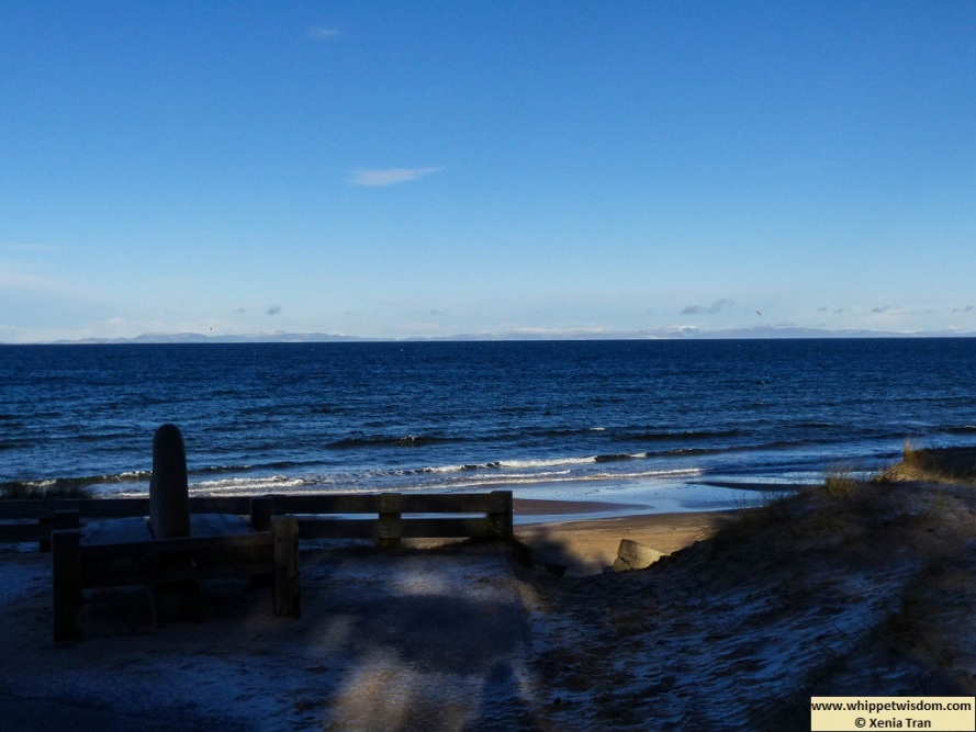 Moray Firth and Sutherland coast seen from frosty dunes