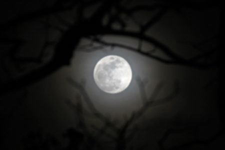 shifting clouds mask moon