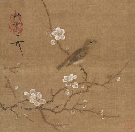 hearing sparrow's song.jpg