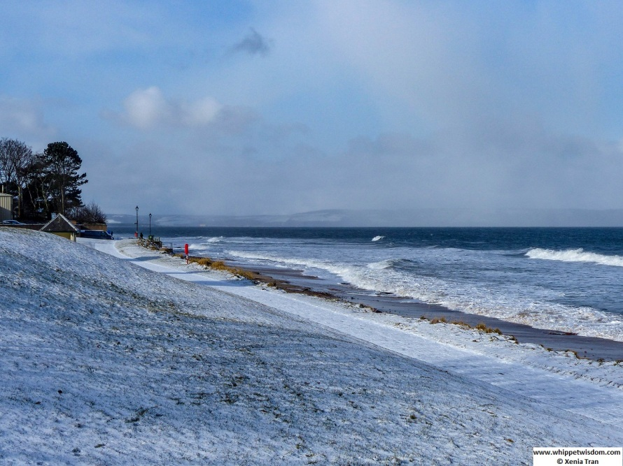 snow-covered shoreline with high rolling waves and a snow shower across the water