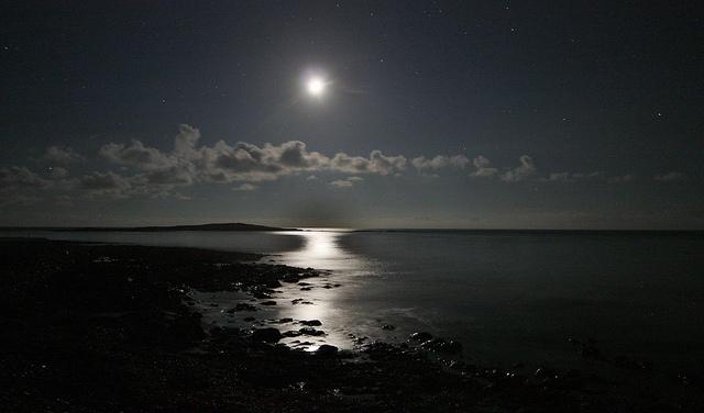 Ronnie Robertson - moonlight