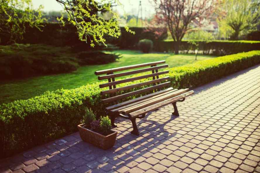 bench-garden-grass-evening
