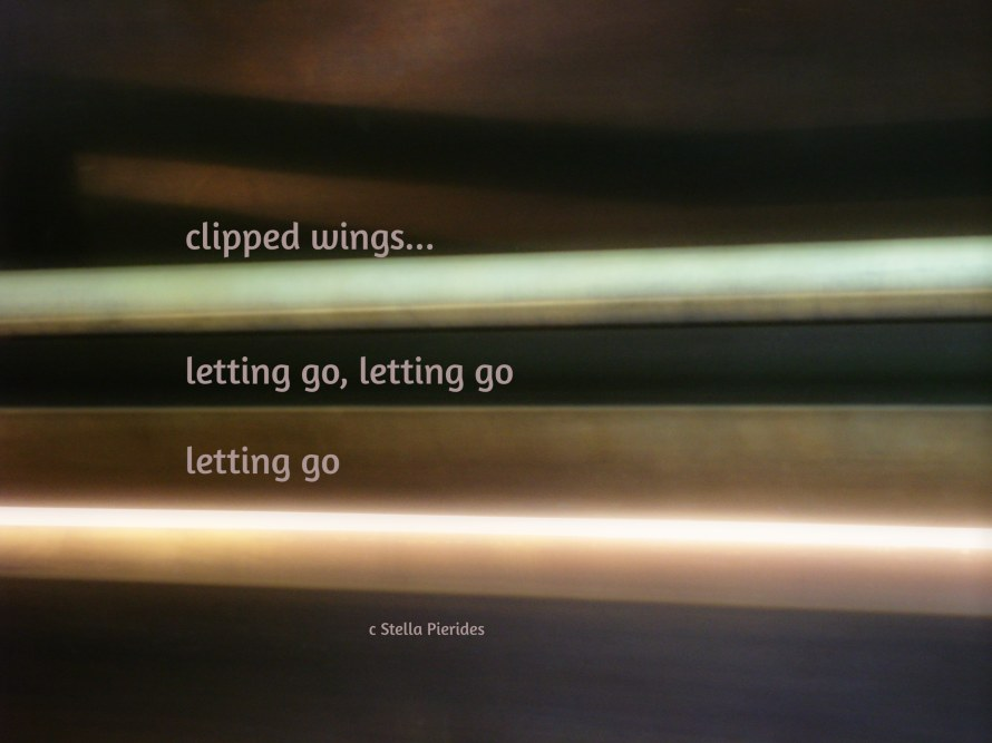 light,clipped wings,haiga