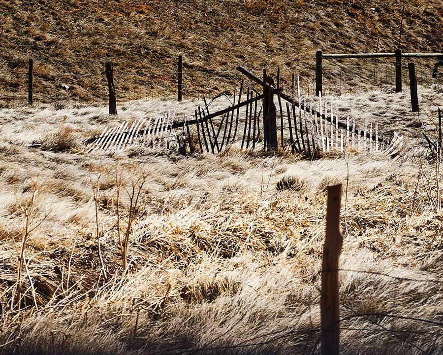 landscape-7.web
