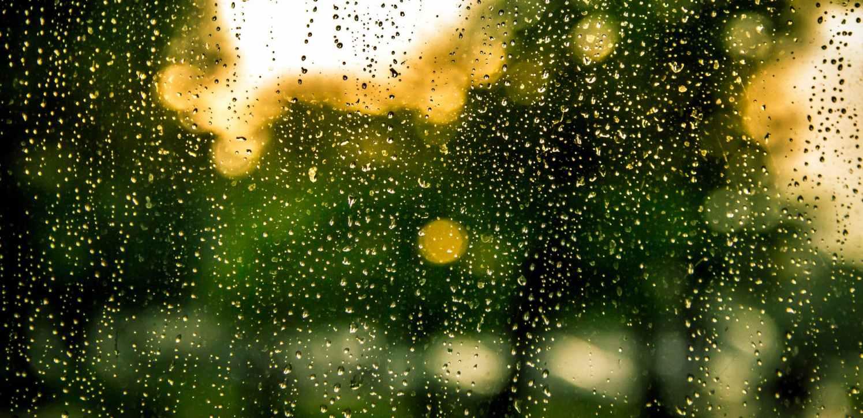 water-rain-raindrops-drops.jpg