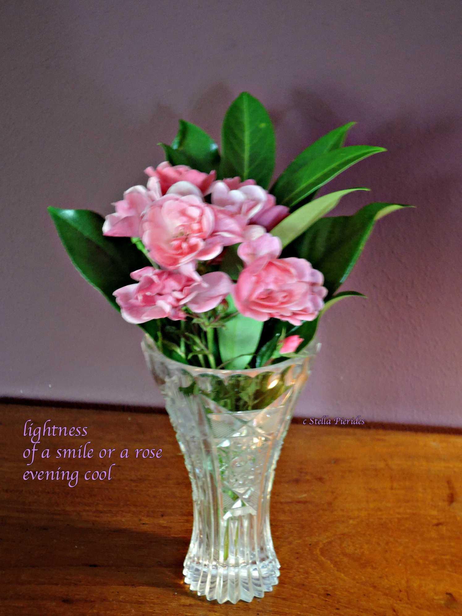 vase,rose,