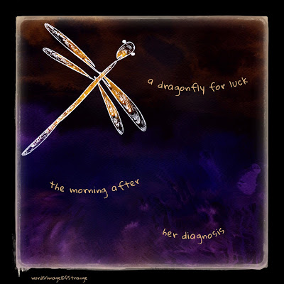 a dragonfly for luck