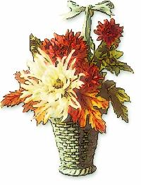 chrysanthemum_basket
