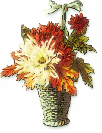 chrysanthemum_basket