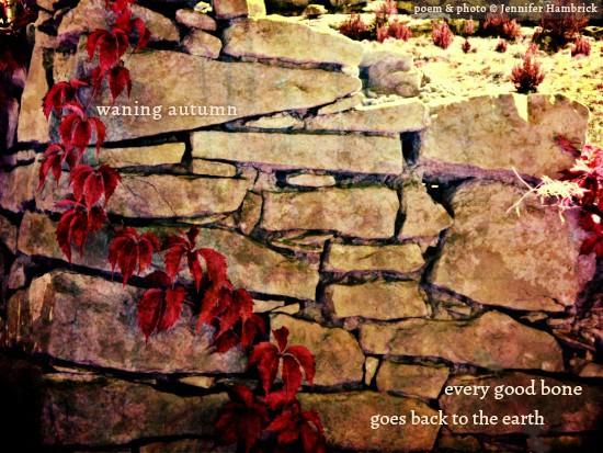 Jennifer Hambrick - waning autumn WITH SIGNATURE