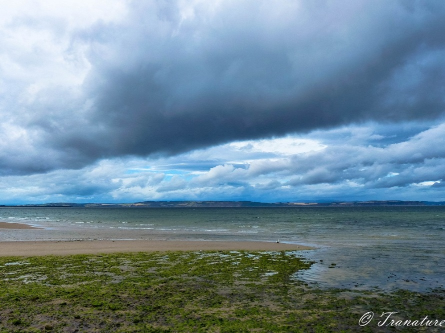storm clouds over the Moray Firth at low tide