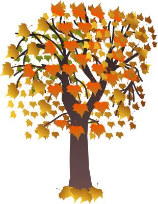 maple_tree_autumn