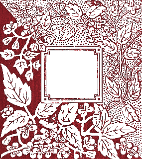 text-frame-1884