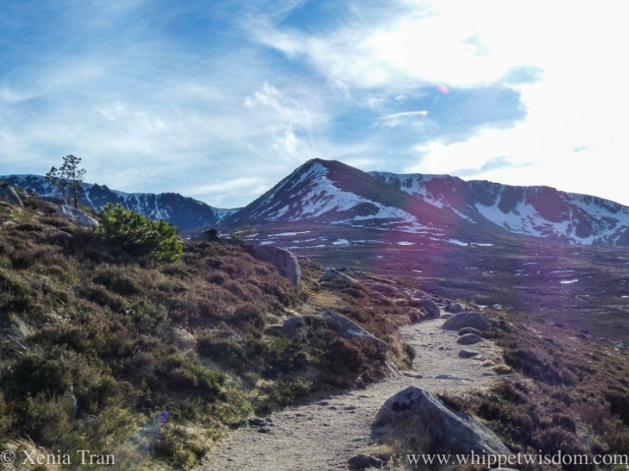 landscape shot of a mountain trail leading towards a corrie with snow fields near the peaks