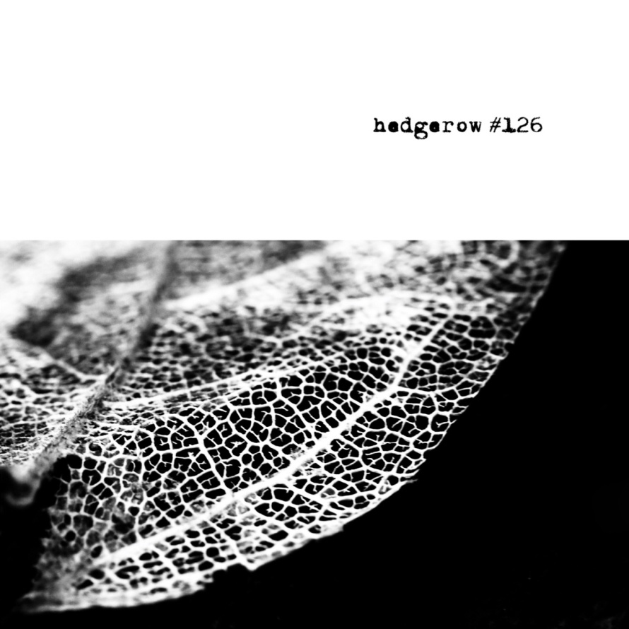 hedgerow #126 COVER front.jpg