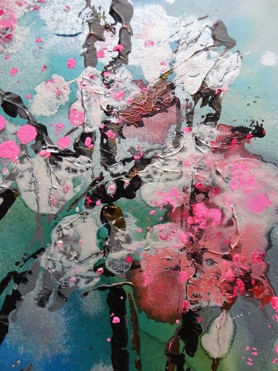 cherry blossoms close up s