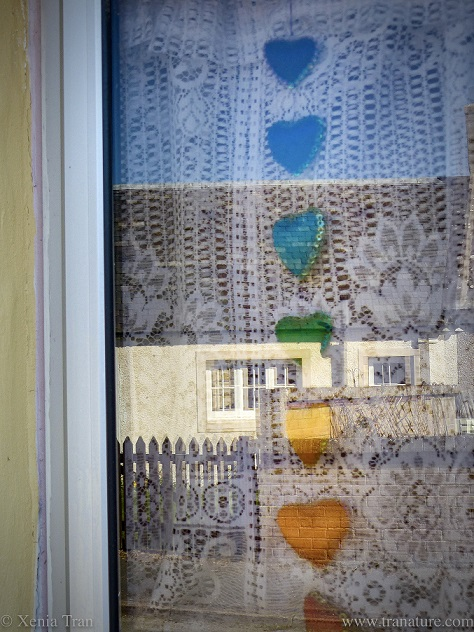 rainbow coloured hearts displayed in a cottage window during lockdown