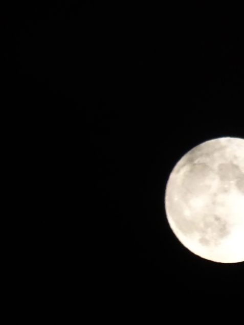 full moon half s