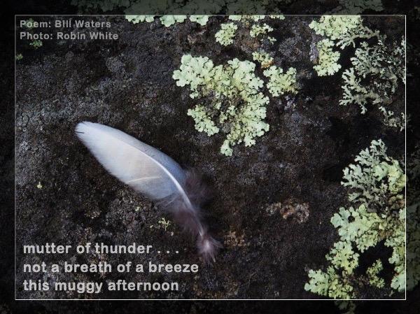 Mutter of Thunder